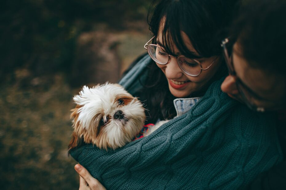 Fede hundeprodukter i 2021